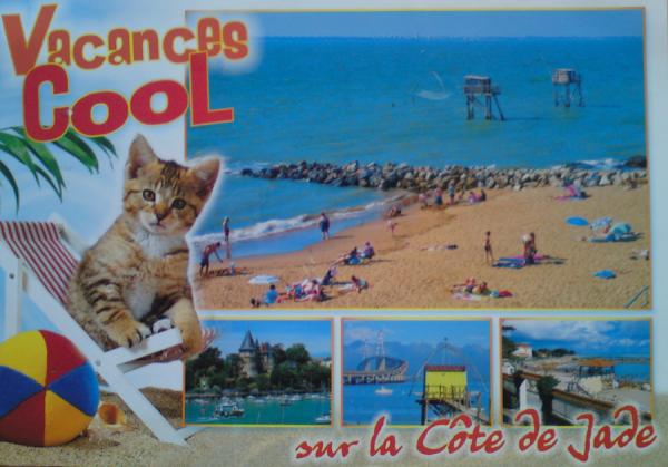 Projet vacances d'été 2014