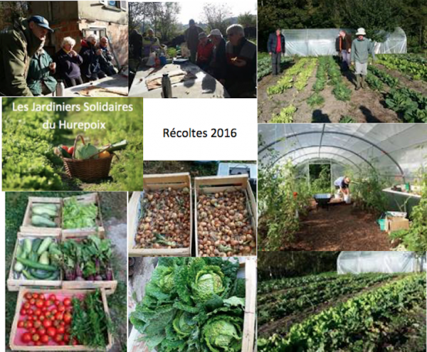 Jardiniers Solidaires : récoltes 2016
