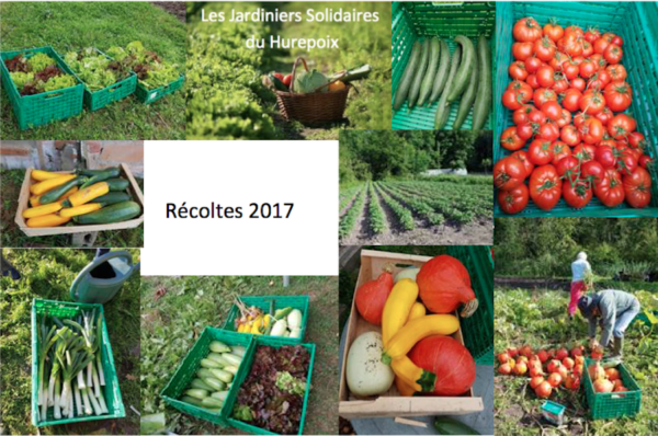 Jardiniers Solidaires : récoltes 2017