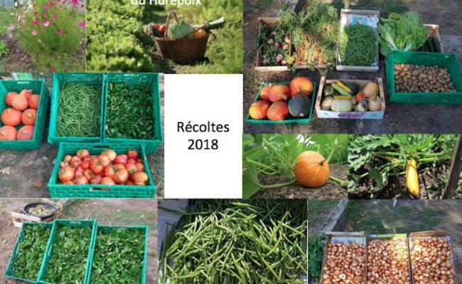 Jardiniers Solidaires : récoltes 2018