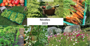 Jardiniers solidaires récoltes 2019