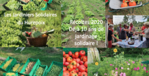 Jardiniers Solidaires récoltes 2020